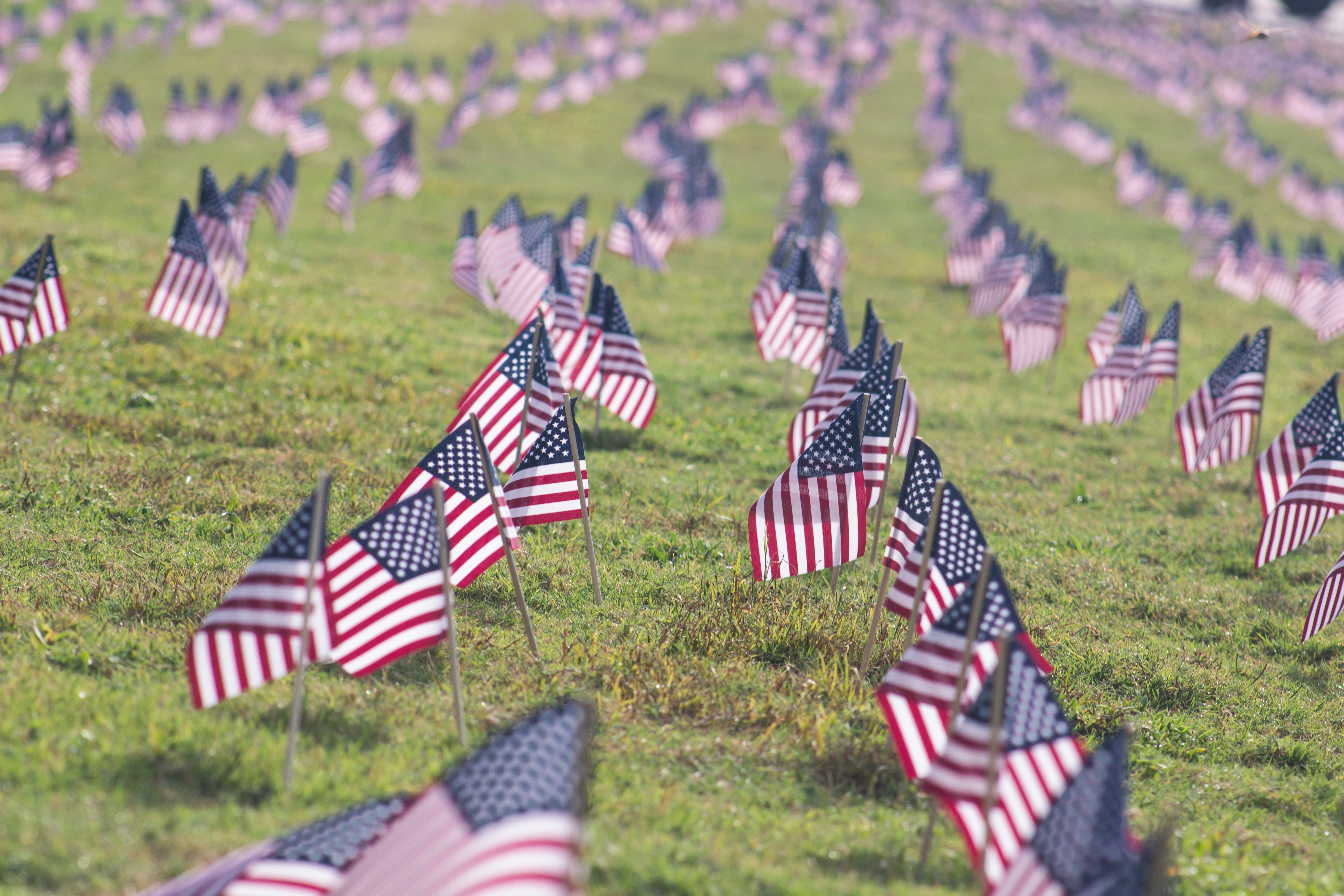 andrew pons 33896 unsplash - This Monday we celebrate Memorial Day